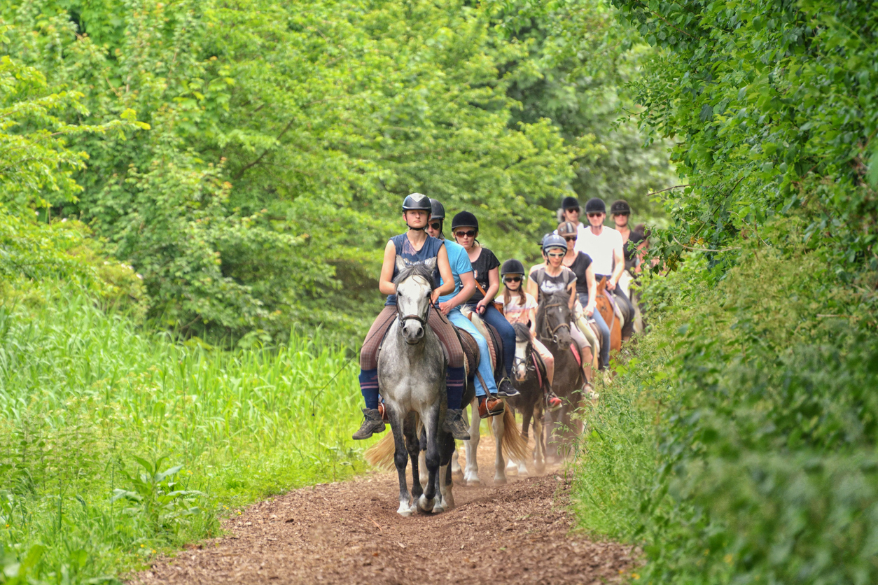 Holland, Renesse. 27.05.2017. A group of tourists makes a horseback ride through the forest.