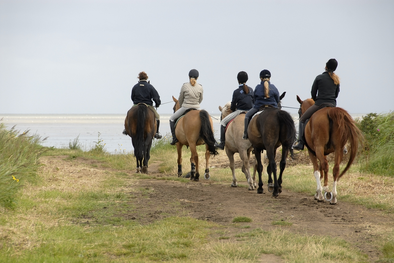 Group of riders at the North Sea