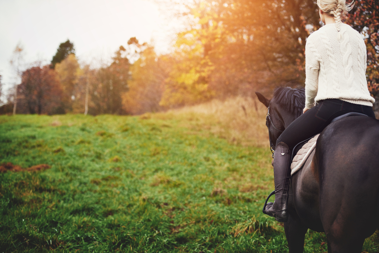 Young woman walking her chestnut horse through an autumn pasture