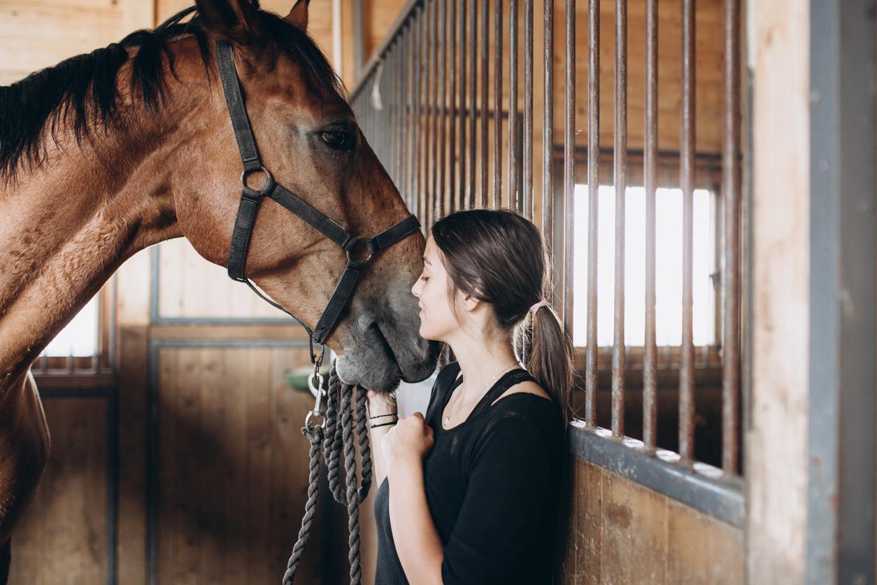 kostnad att ha häst